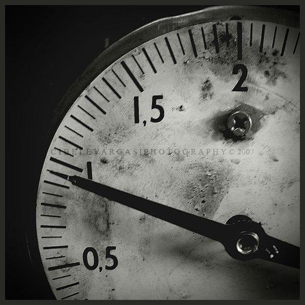 Poesía en Bardulias: Octava del progreso I
