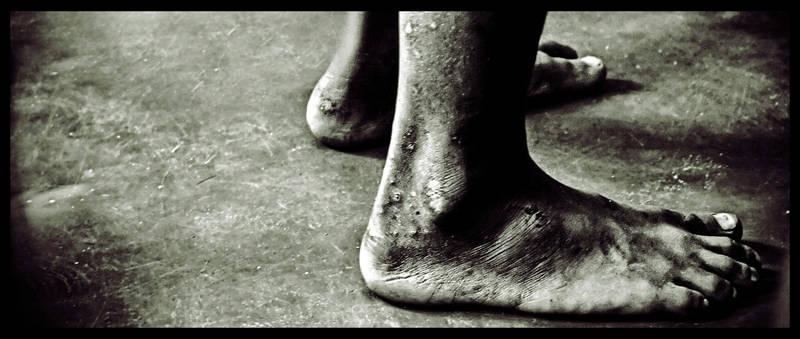 Poesía en Bardulias: Economía